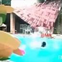 Une piscine et des tuiles